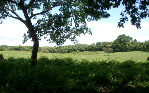photo of a coastal real estate property for sale in San Carlos PA-8