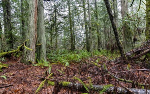 photo of a coastal real estate property for sale in Battle Ground WA