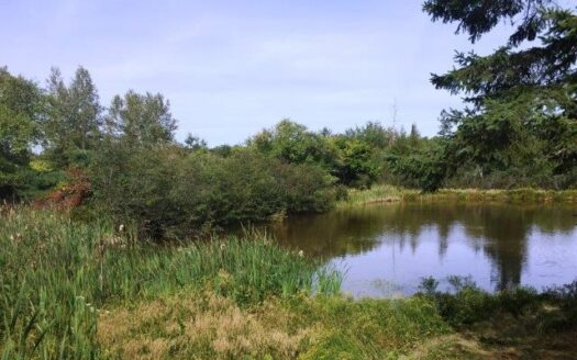 photo for a land for sale listing for Land Lot For Sale in Washington County Maine