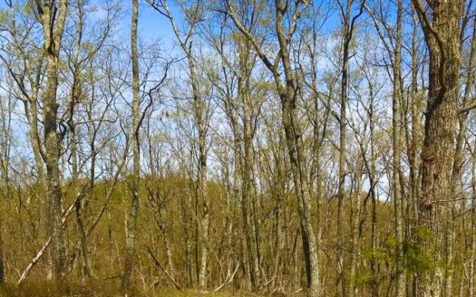 photo for a land for sale listing for Small Acreage Getaway