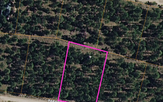 photo for a land for sale listing for MOUNTAIN LAND SACRAMENTO MOUNTAINS NEW MEXICO
