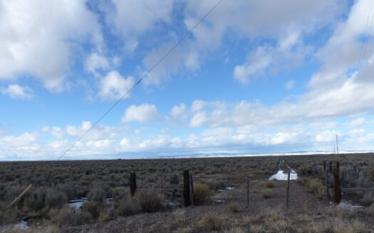 photo for a land for sale listing for 156+ ACRES BETWEEN BURNS AND CRANE
