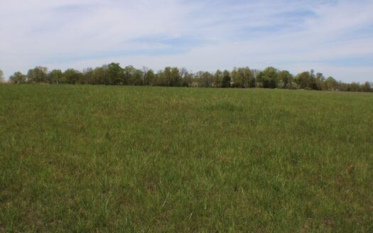 photo for a land for sale listing for Great Farm Land For sale