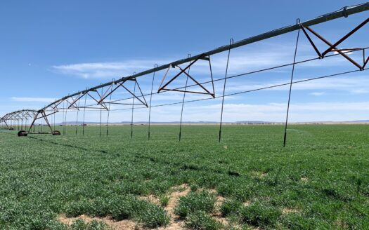photo for a land for sale listing for Farm For Sale Located in Central New Mexico