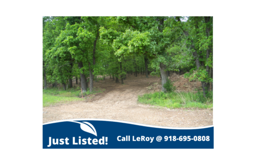 photo for a land for sale listing for FOR SALE IN MAYES COUNTY OK