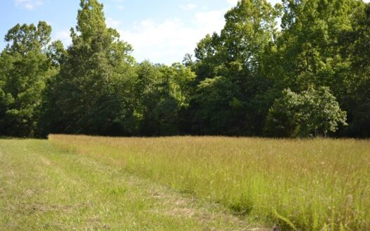 photo for a land for sale listing for Hunting Ranch for Sale in Howell County