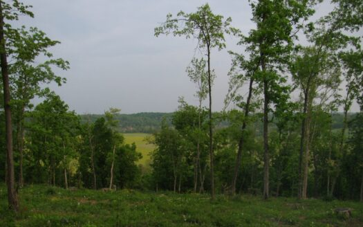 photo for a land for sale listing for Indiana Recreational Land for Sale   Bedford