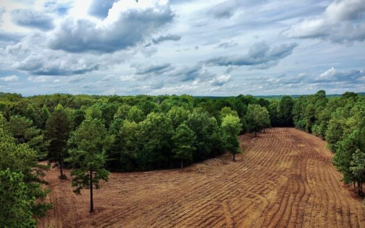 photo for a land for sale listing for LITTLE CYPRESS FARM - 160 ACRES - BOSSIER PARISH