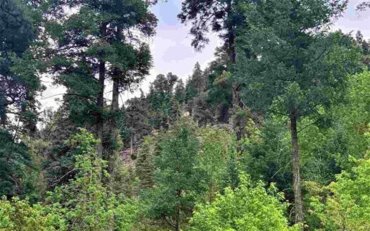photo for a land for sale listing for RUIDOSO NEW MEXICO LAND FOR SALE
