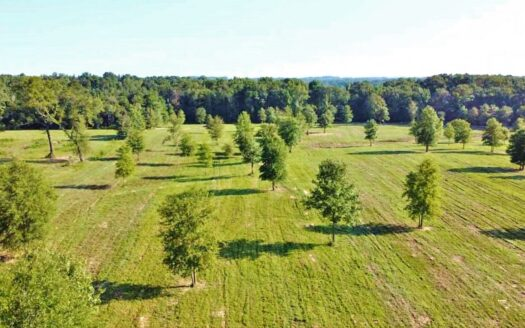 photo for a land for sale listing for 61.11 Acres Pasture/Hunting Land for Sale Lincoln Parish LA