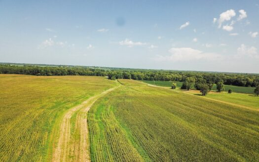 photo for a land for sale listing for Tract 2 - 235 ac +/- for auction in Audrain County