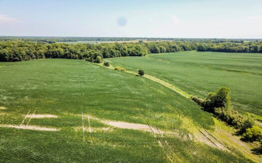 photo for a land for sale listing for Tract 3 - 147 ac +/- for auction in Audrain County