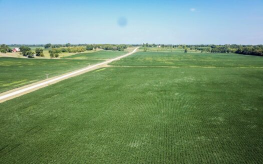 photo for a land for sale listing for Tract 4 - 83 ac +/- for auction in Audrain County