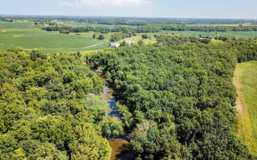 photo for a land for sale listing for Tract 5 - 47 ac +/- for auction in Audrain County