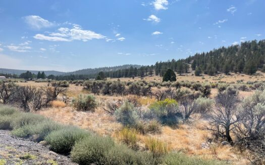 photo for a land for sale listing for 3.5 acres of Vacant land in Modoc Co.