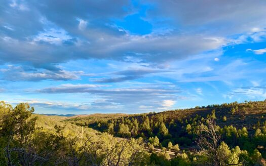 photo for a land for sale listing for HUNTING LAND BORDERING NATIONAL FOREST NEW MEXICO