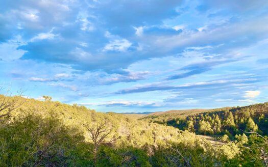 photo for a land for sale listing for SACRAMENTO MOUNTAIN HUNTING LAND NEW MEXICO