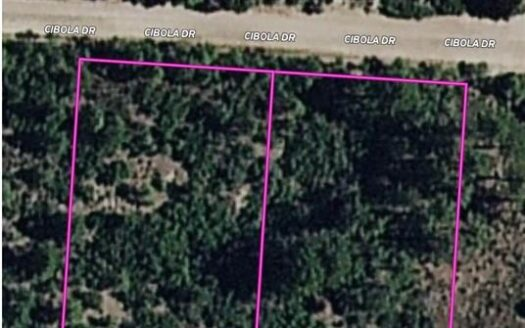 photo for a land for sale listing for MOUNTAIN LAND IN NEW MEXICO FOR SALE