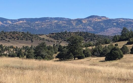 photo for a land for sale listing for Gorgeous Northern New Mexico Farm with Well