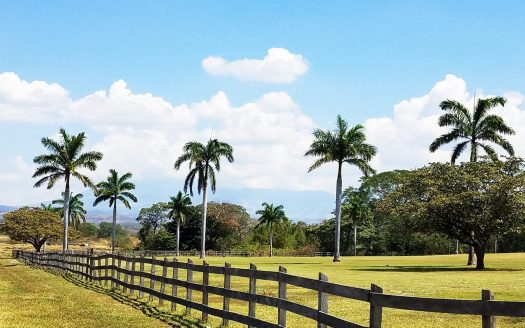 ranches for sale listing image for Farm for Sale in Costa Rica United Country Costa Rica