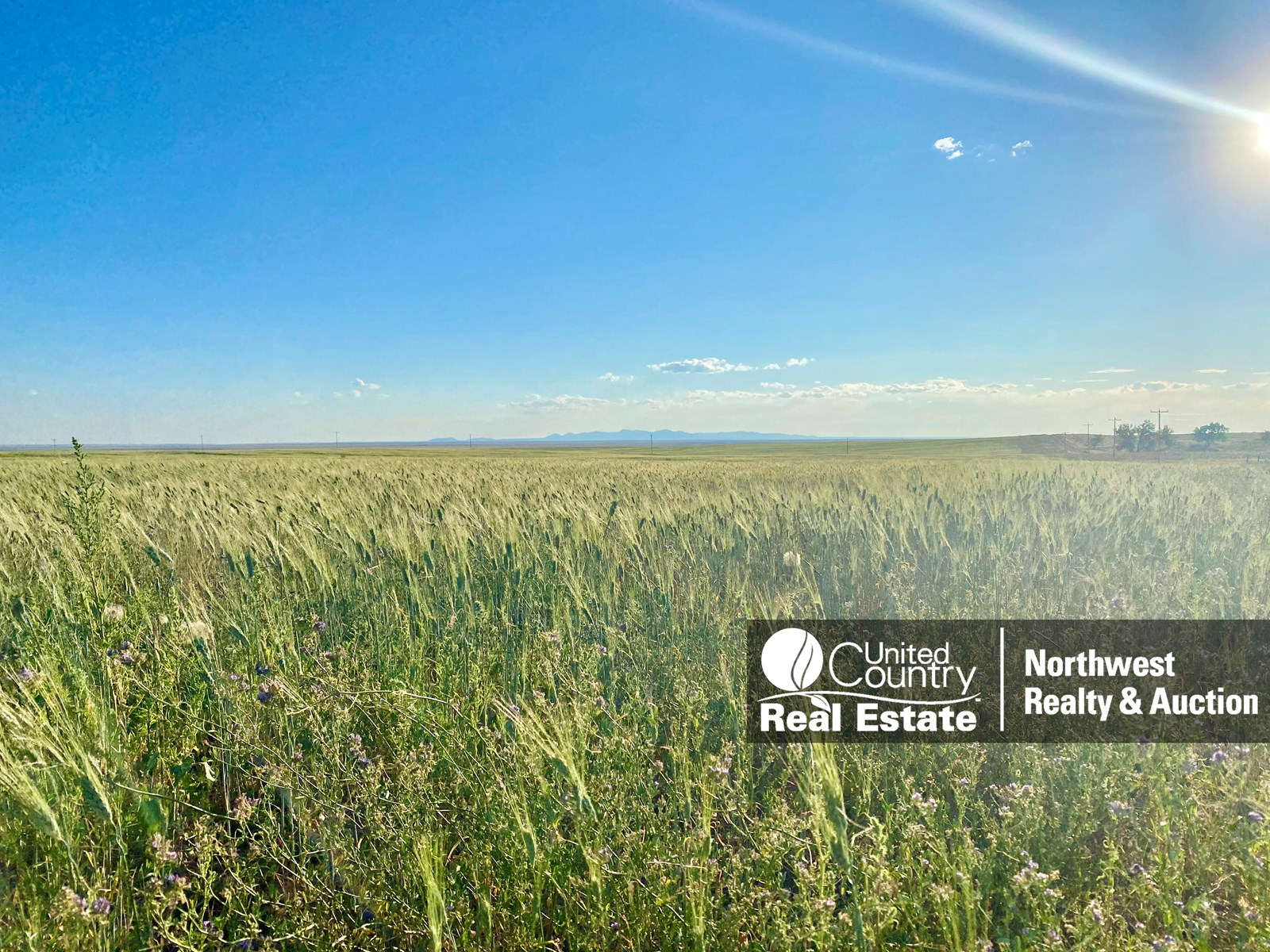 ranches for sale listing image for Organic Farm Ground South Of  Malta