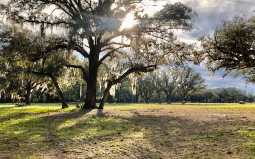 ranches for sale listing image for 5 Acres for Sale in Gilchrist County