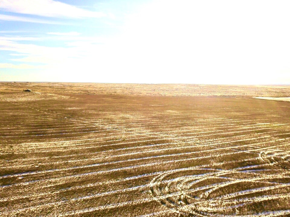 ranches for sale listing image for 320+/- Acres Organic Farm Ground South Phillips County Mt