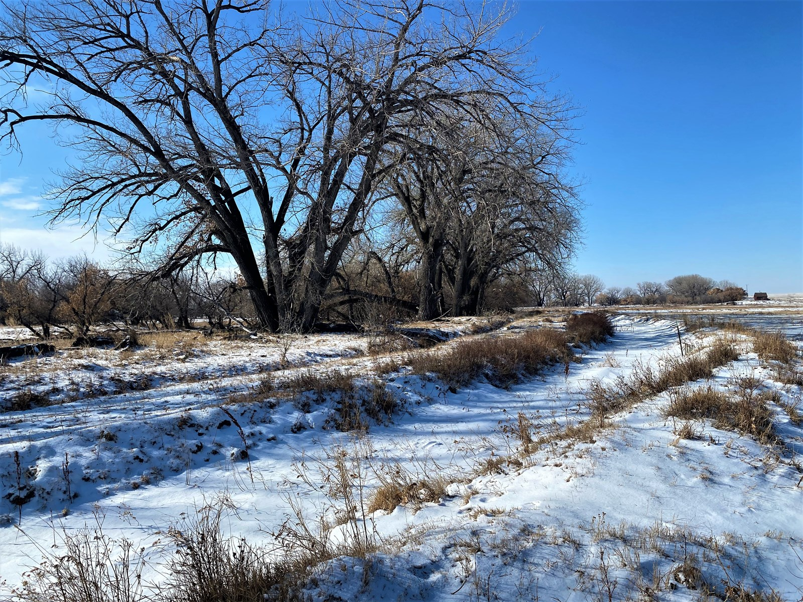 ranches for sale listing image for Historic 2n Ranch for Sale Deeded Acres with Dodson Creek