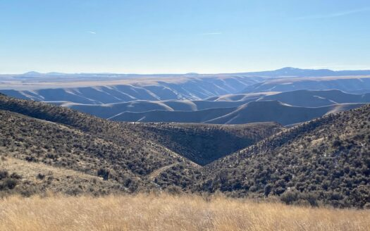 ranches for sale listing image for 2500+ Ac Cattle Ranch and Farm Home!