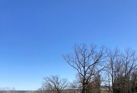 ranches for sale listing image for Ranch Land for Sale in South Central Missouri
