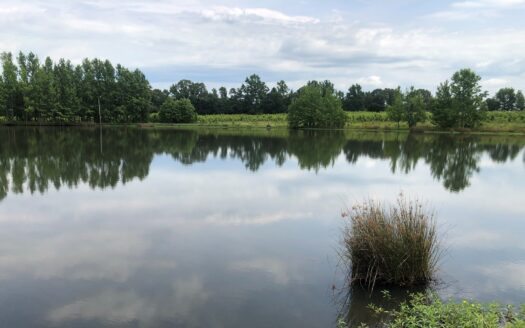 ranches for sale listing image for Farm / Ranch for Sale in Hickory Plains