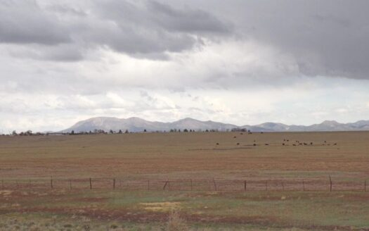ranches for sale listing image for 333± Acres Of Blue Gamma Grazing Land- Multiple Opportunity