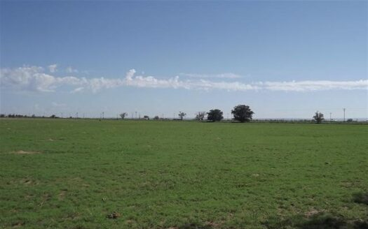 ranches for sale listing image for 30± Acres with Licensed Water Rights Near Estancia